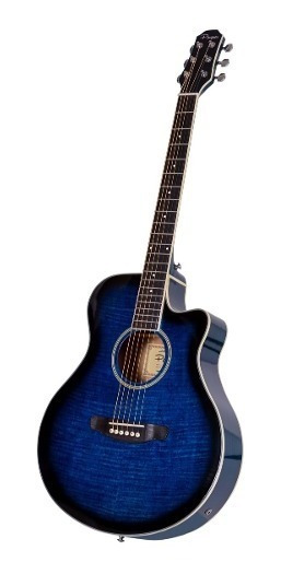 Guitarra Electroacustica Parquer Apx Media Caja Azul Funda