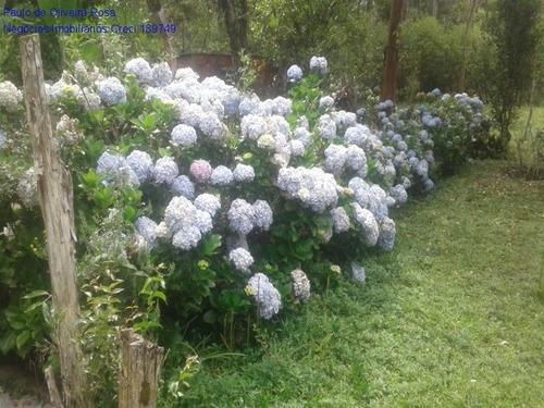 Imagem 1 de 25 de Chacara - Ch00032 - 69793984