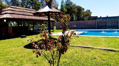 Alquiler Pileta, Quinta, Por Dia, Finde, Cumpleaños, Reunion