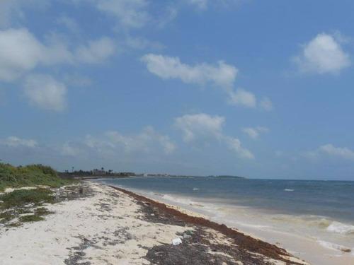 Imagen 1 de 16 de Oportunidad!! Terreno Frente Al Mar Mahahual-rio Indio P2699