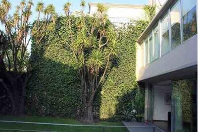 Moderna Con Súper Jardín