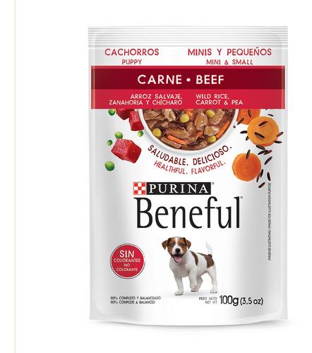 Imagen 1 de 1 de Beneful Sobre Cachorro Carne Arroz Salvaje Y Zanahora 100gr.