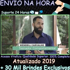 Curso Ciclo Da Maestria 2.0 Wendel Carvalho 2019 + 30mil B