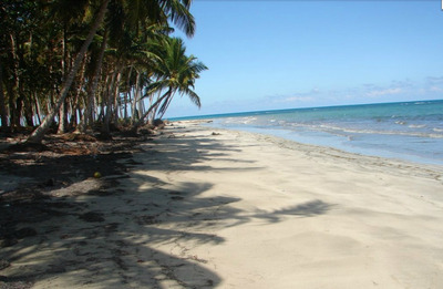 Finca En Playa Magante, Gaspar Hdez. Republica Dominicana
