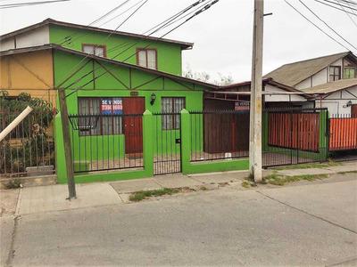 Las Ligustrinas, Coquimbo