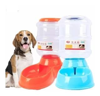 Pack 2 Dispensador Automático Alimento+agua Mascotas Gocy