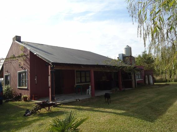 Venta De Casa Quinta En San Vicente.