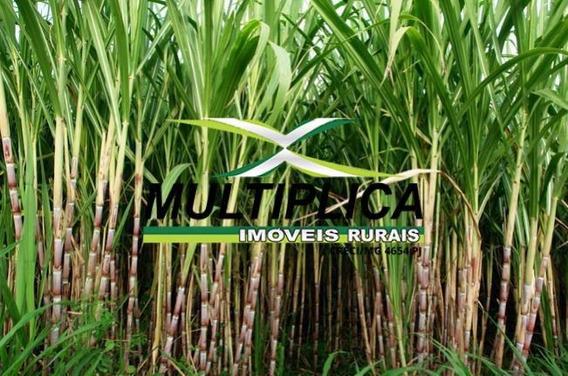 Fazenda A Venda Em Tupaciguara Mg 193,6 Hectares Cana Soja - 312