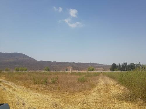 Terreno En Venta Sobre Carretera Guadalajara-morelia. Zapotitan De Hidalgo, Jocotepec, Jalisco