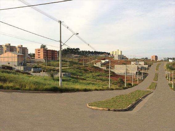 Loteamento, Vila Carmela I, Guarulhos - V225