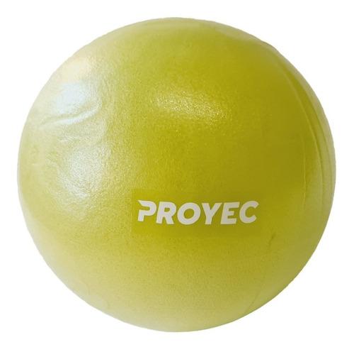 Pelota Pilates 25 Cm Yoga Para Esferodinamia Proyec Gym