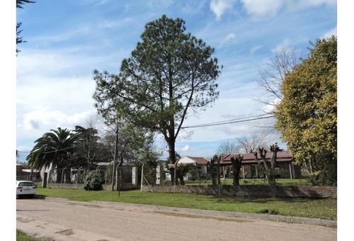 Imagen 1 de 14 de Casa Quinta En Pueblo Belgrano