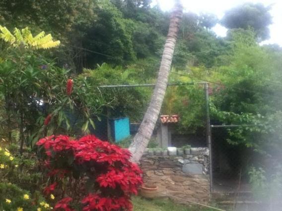 Apartamento En Venta, El Hatillo, Caracas, 0424-1691526