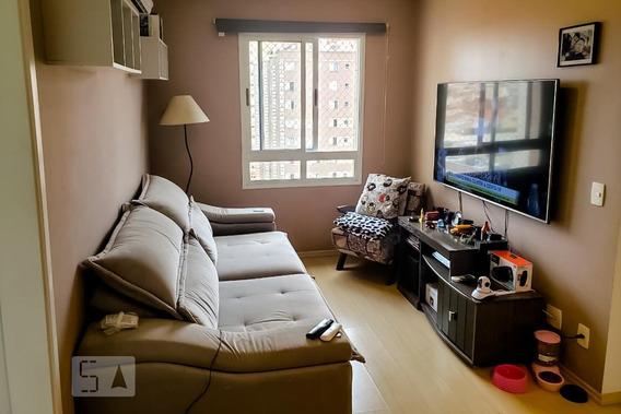 Apartamento Para Aluguel - Jardim Maia, 2 Quartos, 48 - 893070466