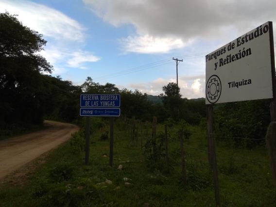 Dueño Vende Terreno De 1 Hectarea A 20 Minutos Del Centro