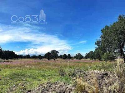 Venta - Terreno - Tlaxcala - 57,656 M - $17,296,821