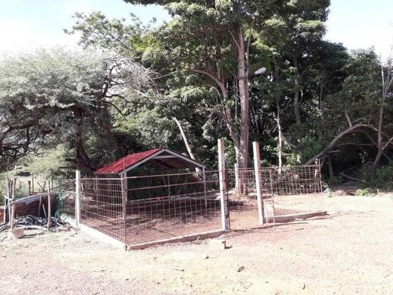 Terreno En Venta Curimagua Cod-20-682704145725250