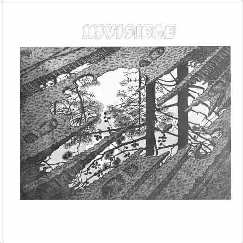 Vinilo Invisible - Invisble - Lp Reedicion 2016