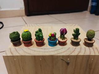 Macetas De Suculentas Y Cactus Adorno