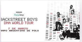 Vip Platino Entrada Backstreet Boys Dna Tour