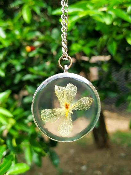 Colar Flor Asa De Borboleta Natural + Brinde Surpresa !