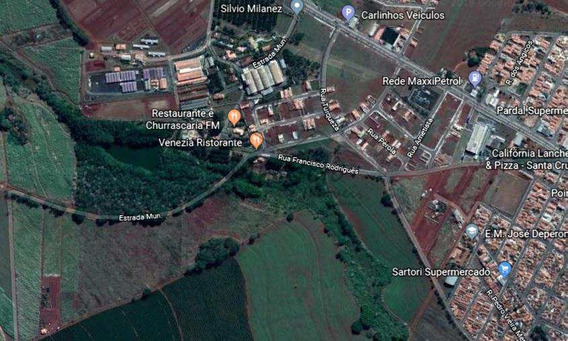 Chácara, Zona Rural, Santa Cruz Das Palmeiras - R$ 880 Mil, Cod: 10131619 - V10131619