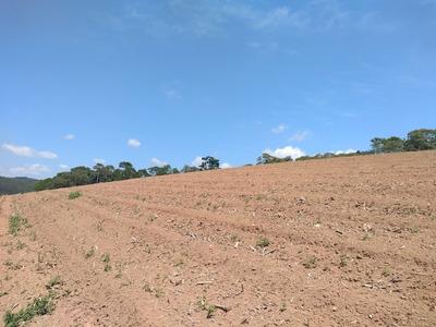 Otima Localização Terrenos Plano 600 M2 Veja A Descrição J