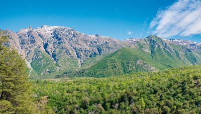 Bosques De Lircay