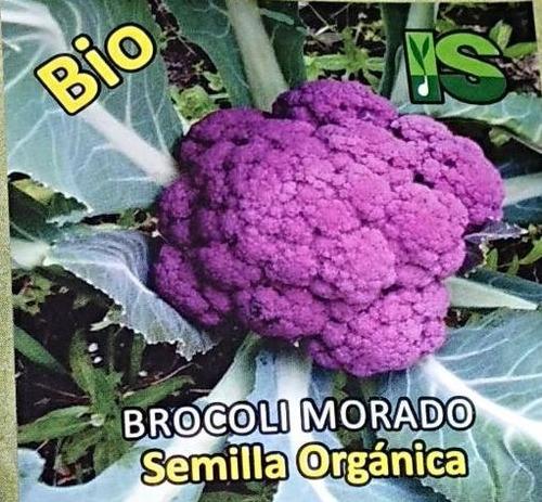 Semillas Organicas De Bocroli Morado X1 Gramo