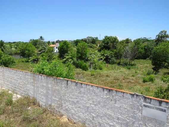 Lotes Em Condomínio Para Comprar No Barra Do Jacuípe Em Camaçari/ba - 404