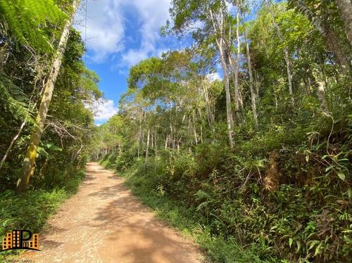 Imagem 1 de 15 de Chácara De  2.500m2 `a 2,5km Do Centro De Juquitiba  À Venda Bairro Cachoerinha - Ch07781 - 69454197