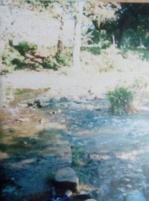 Terreno En Venta En Huasteca Potosina
