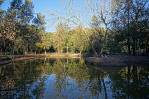 Chacra Con Bosque Natural De 23 Hás. Piscina San José Venta