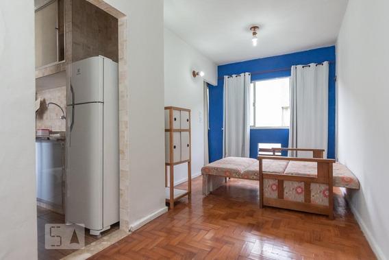 Apartamento Para Aluguel - Santa Teresa, 1 Quarto, 25 - 892850686