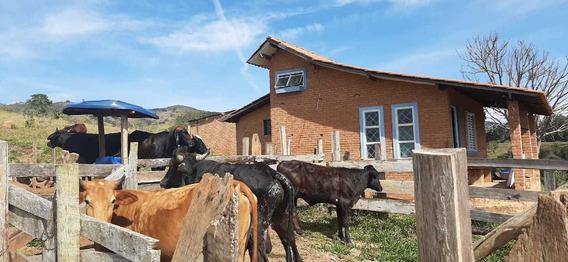 Sítio No Sul De Minas , Cidade De Caxambu Com 23 Hectares , Chalé , Curral , 5klm De Estrada De Terra. - 966