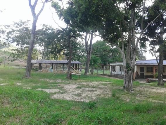 Hacienda Familiar En Bejuma