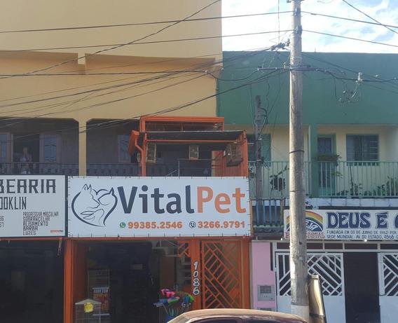 Passo Ponto Pet Shop Com Banho E Tosa