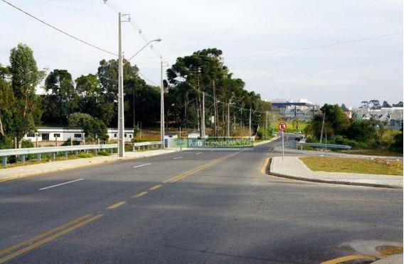 Terreno À Venda, 589 M² Por R$ 410.550,00 - Campo Pequeno - Colombo/pr - Te0613
