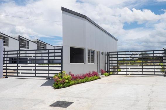 Excelente Galera En Alquiler En Milla 8 Panama Cv