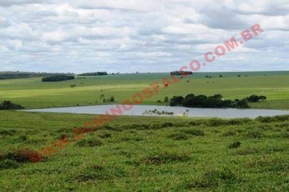 Venda - Fazenda - Zona Rural - Cristalina - Go - D6299
