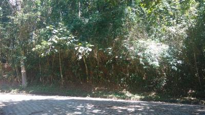 Terreno Em Condomínio Para Venda Em Embu Das Artes, Chácaras Embu Colonial - 509