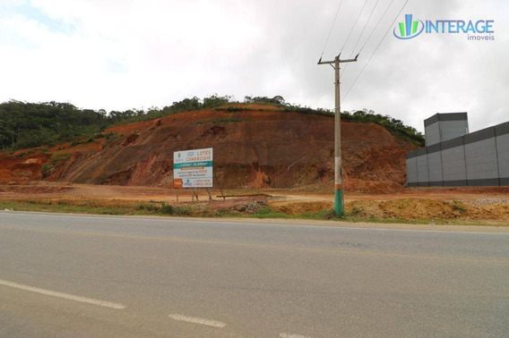 Área Comercial À Venda, Rio Pequeno, Camboriú. - Ar0006