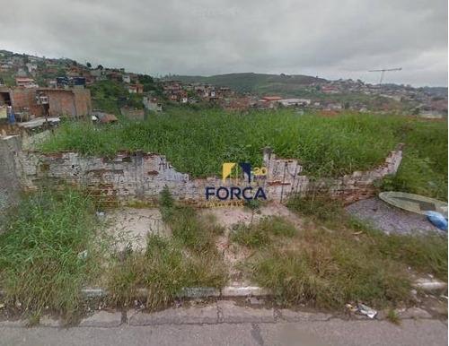 Terreno À Venda, 250 M² - Jardim Fortaleza - Guarulhos/sp - Te0049