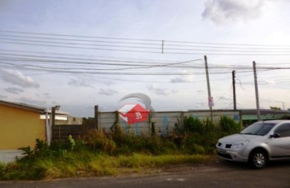 Terreno A Venda No Bairro Pinheirinho - Curitiba - Pr