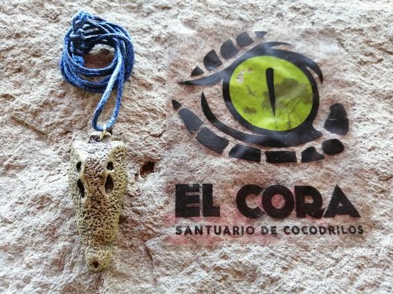 Collar Cráneo Cocodrilo Santuario De Cocodrilos El Cora
