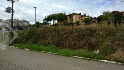 Terreno - Centro - Ref: 204577 - V-204577