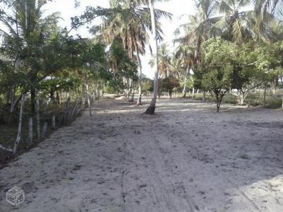 Terreno Com 3.300m² Em Macaiba