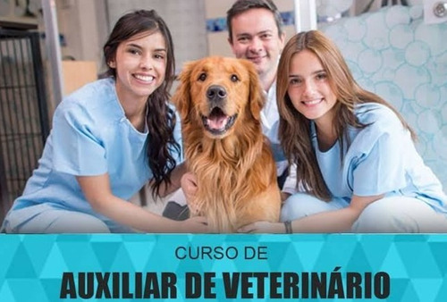Imagem 1 de 3 de Curso Auxiliar De Veterinária Ead
