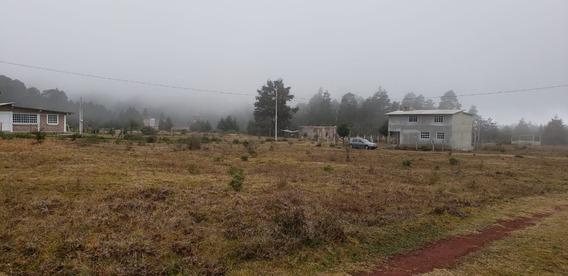 Venta De Terrenos En Hidalgo Para Cabañas De Descanso.
