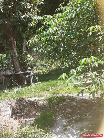 Terrenos En Venta/palo Negro/ 04243174616